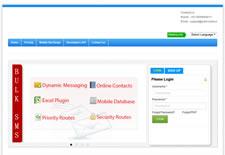 Portfolio Static Website Development, Dynamic Website Development